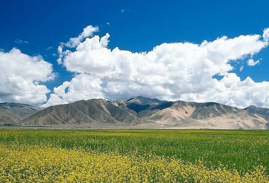 郑州到内蒙古双卧六日游