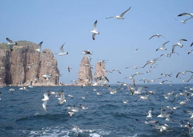 天宁岛/塞班岛六天两岛游