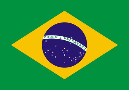 巴西商务签证,巴西商务签证所需资料,巴西商务签证多少钱?