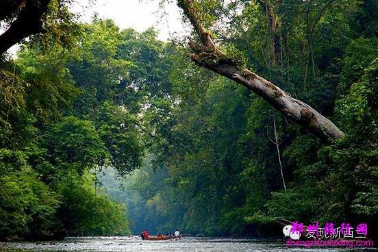 12月是马来西亚旺季的开始,这里气候宜人,游客可以到大汉山国家