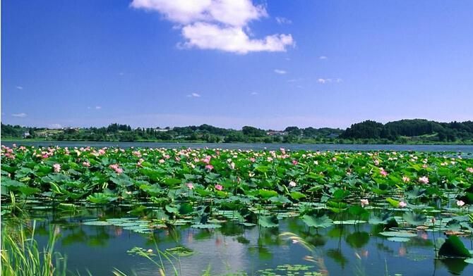莲花温泉两日游
