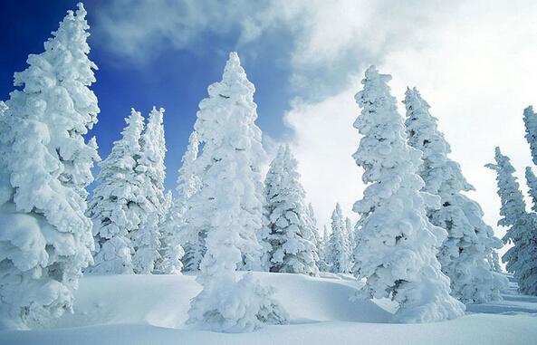 <b>哈尔滨、雪乡秃顶山、二浪河、亚布力滑雪8日游</b>