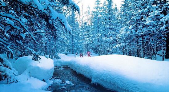 <b>哈尔滨、雪域之窗亚布力、童话雪乡双卧8日游</b>