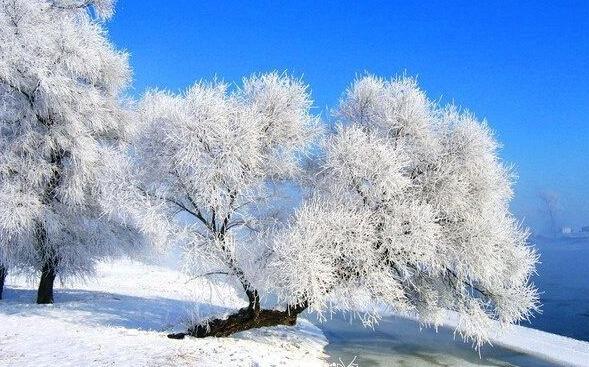 哈尔滨、雪乡、