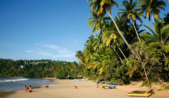 斯里兰卡精华7日之旅
