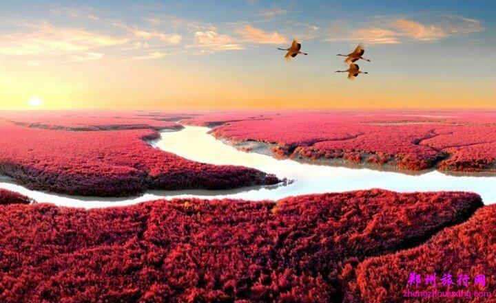 红海滩风景区简介,红海滩风景区门票,红海滩风景区在哪?