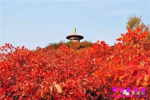 南阳桐柏红叶风景区