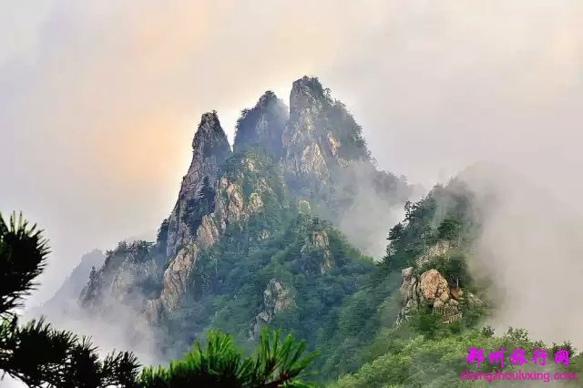 由老界岭自然保护区,黄石庵森林生态旅游区,龙潭沟风景区三大主体构成