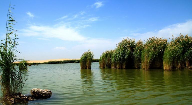 郑州到青铜峡黄河大峡谷、通湖草原、沙湖宁夏双飞4