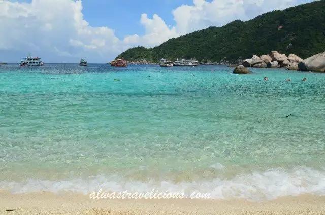 苏梅岛南园岛龟岛